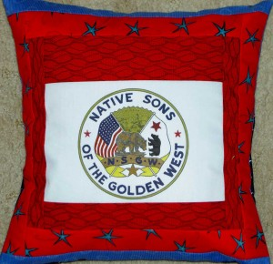 NSGW logo pillow #2