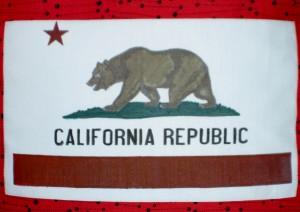 Bear Flag pillow #2 -detail