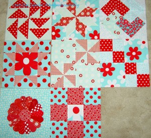 Aqua-Red Sampler Blocks