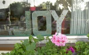 Joy in Front Window