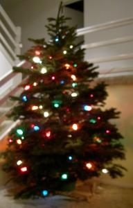 Tree 2009