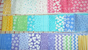 Jelly Roll for Zig Zaggy Quilt