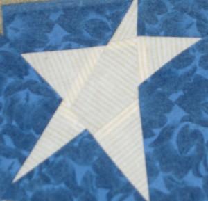 Barsha's Star