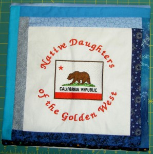 NDGW Pillow Cover #2