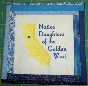 NDGW Pillow Cover #1