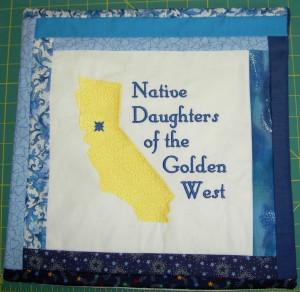 NDGW Pillow Cover #1