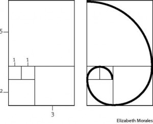 Fibonacci sequence from WolfieWolfgang.com
