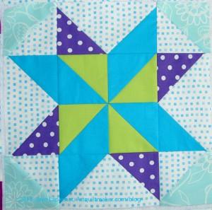 Star Sampler: Star Puzzle