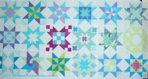 """Star Sampler: 18 12"""" Blocks"""