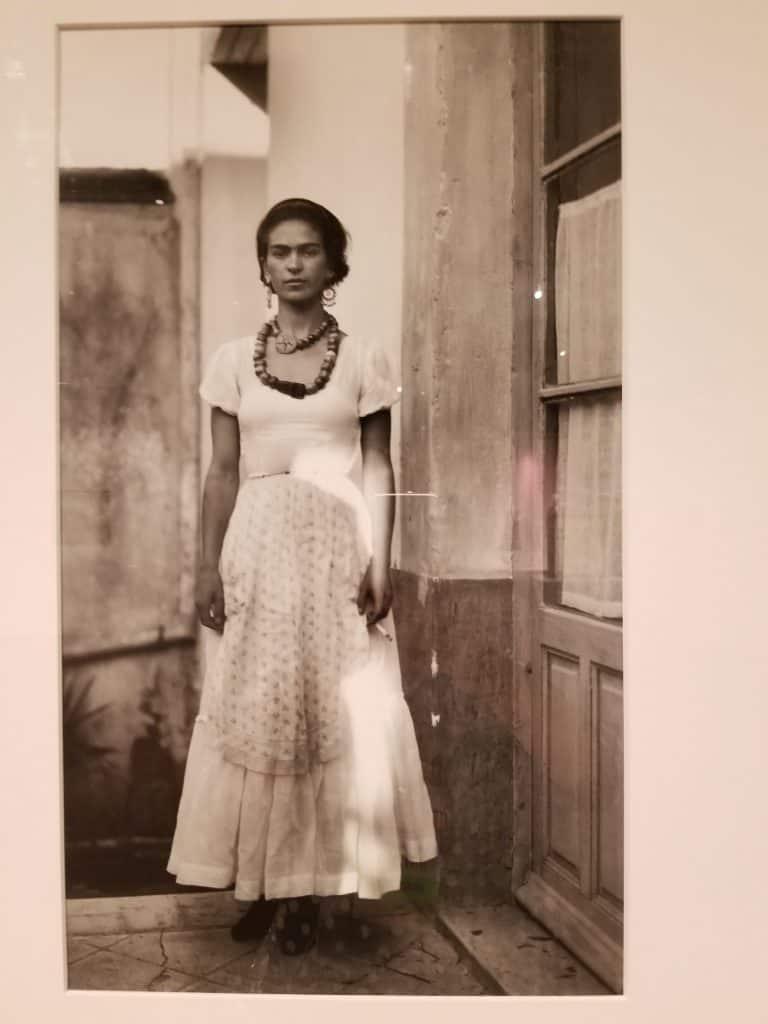 Frida by Guillermo Davila