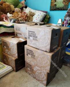 Quilt Books in Boxes